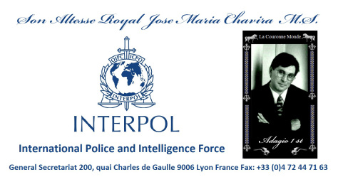 interpol-international-police-and-intelligence-force-1 (1)